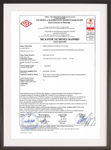 TSE Inspection and Experiment Report